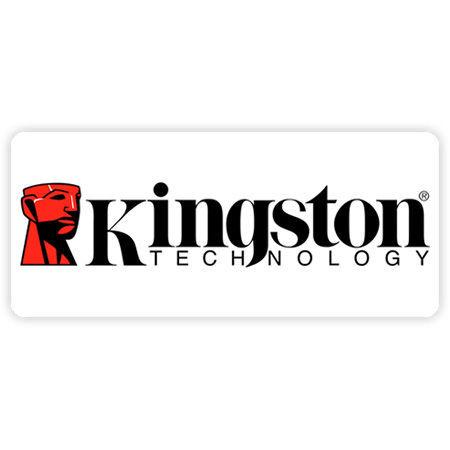 تصویر برای دسته کینگستون (kingstone)